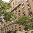 The Greystone 212 West 91st Street