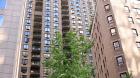 212_east_47th_street_nyc.jpg