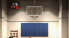 222_w80_-_basketball.jpg