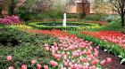 hampton_court_garden.jpg